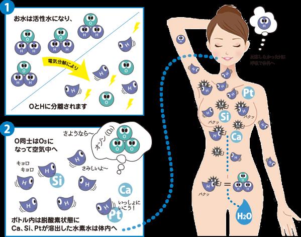水素水生成過程